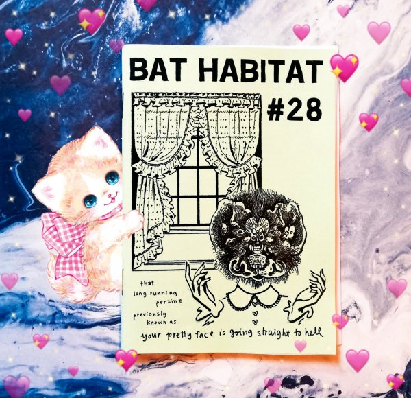 zine photo: Bat Habitat on a pink tablecloth with a kitty