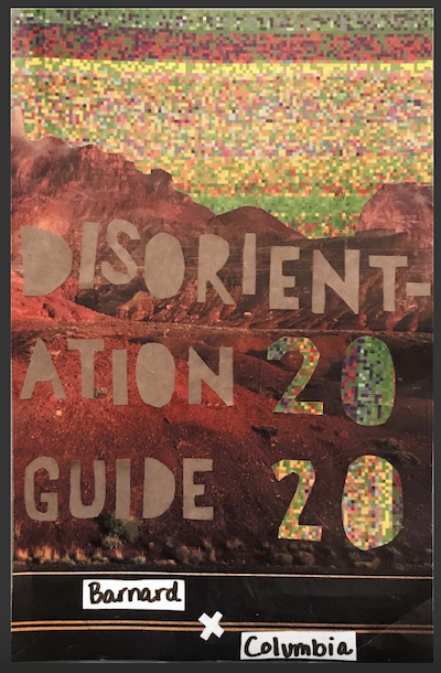 zine cover: Disorientation Guide 2020 sunset vibe over mountain vibe